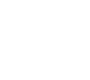 logo - akademia data science